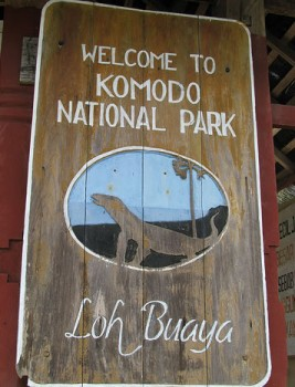Komodo National Park – Largest Dragon Lizard