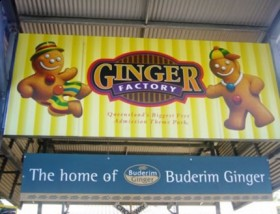 the world largest ginger factory