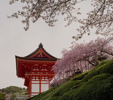Kyoto – the Cherry Blossom of Traditional Japanese Culture