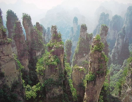 Avatar & Zhangjiajie City