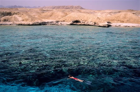 Snorkelling (instead of diving) in Egypt's Red Sea