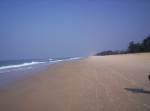 What To Expect When Spending A Family Holiday in Goa