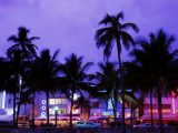 A Music Lovers Guide To Miami