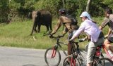 Bike Tour Alleppey
