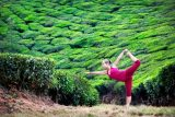 Yoga Poses You Can Do Outside When You Are Traveling
